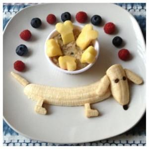 fruithond