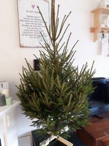 Kerstboom opzetten: zelf een kerstboom kruis maken