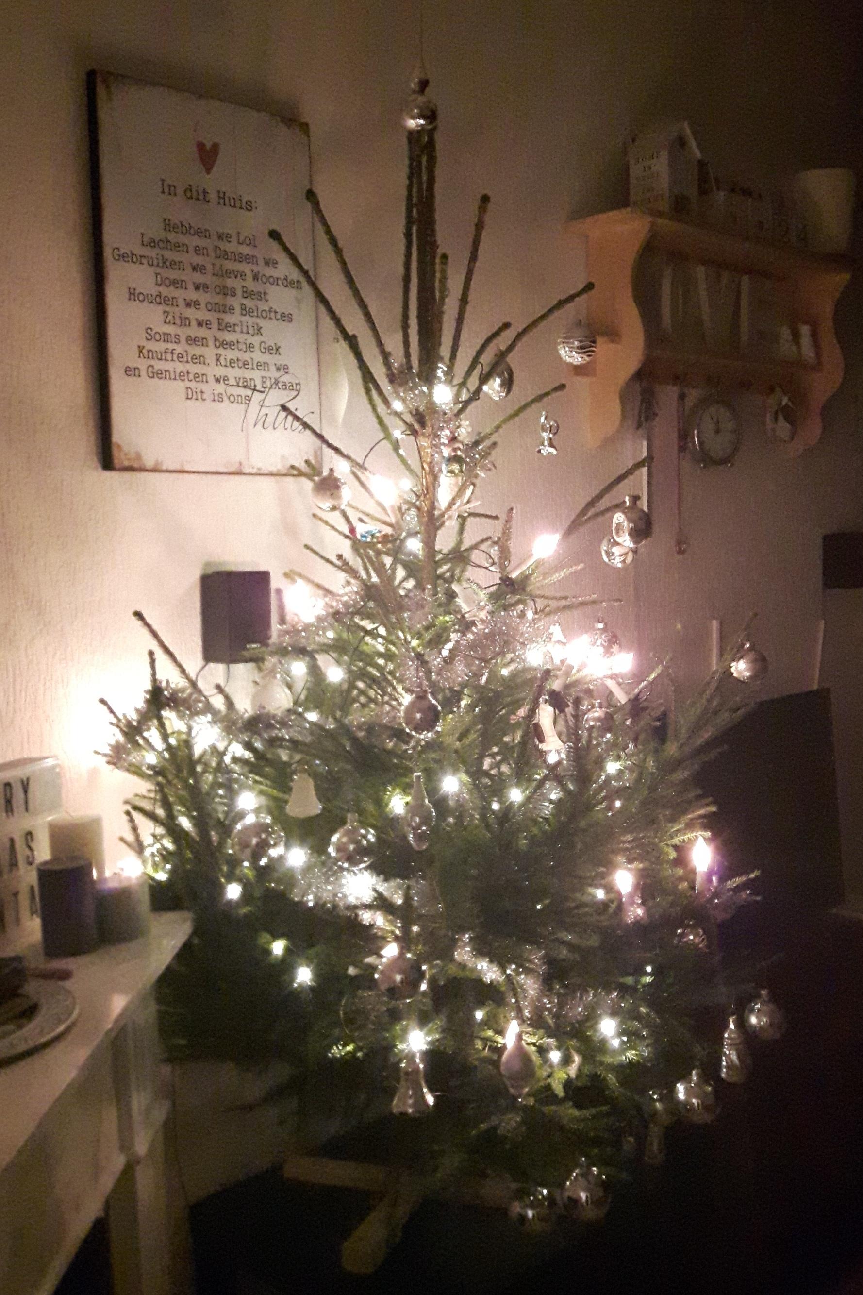 Kerstboom Opzetten Zelf Een Kerstboom Kruis Maken Kaboutertuin